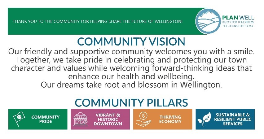 Community Vision and Pillars
